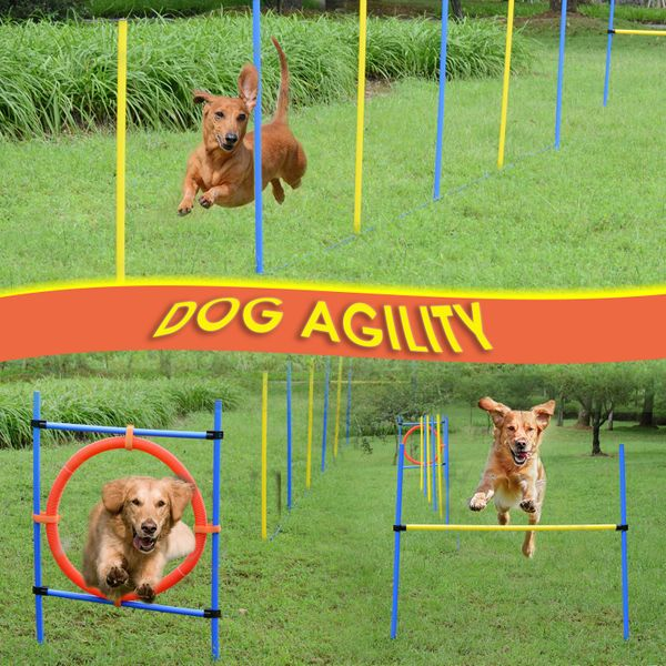 PawHut Dog Pet Obstacle Agility Training Kit High Jump Weave Pole Ring Obedience Equipment Portable | Aosom Canada