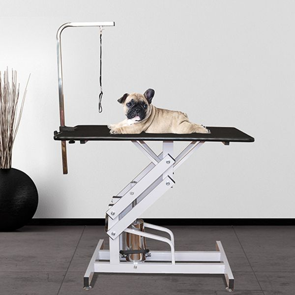 """Pawhut 42"""" x 24"""" Adjustable Pet Grooming Table with Arm"""