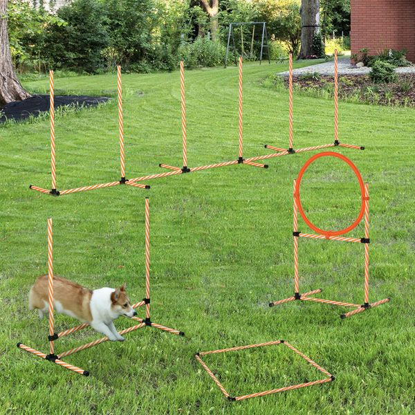 PawHut 4PC Portable Pet Agility Training Set Hurdle for Dog Obstacle Exercise with Adjustable Height Jump Ring High Jumper Weave Poles Square Pause Box Carry Bag Whistle Orange and White Course | Aosom Canada