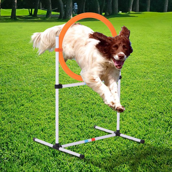 PawHut 2-in-1 Dog Obstacle Training Agility Equipment Tire ...