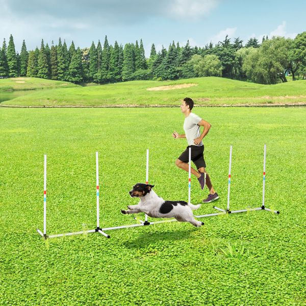 PawHut Fixed Dog Agility Training Obstacle Set with Fun Weaves Poles Fixed-Height Stable Poles and Easy Storage Bag Sturdy Weave Pet Dogs Outdoor w/   Aosom Canada