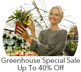 Greenhouses Sale