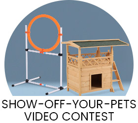 pet video contest